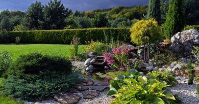 8 tajemství zahrady, o kterých jste nevěděli