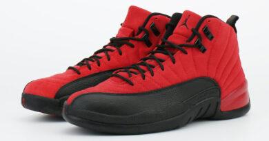 Pánské červené tenisky Air Jordan 12 Reverse Flu Game Varsity Red/Black CT8013-602 semišové a vysoké kotníkové boty a obuv Jordan