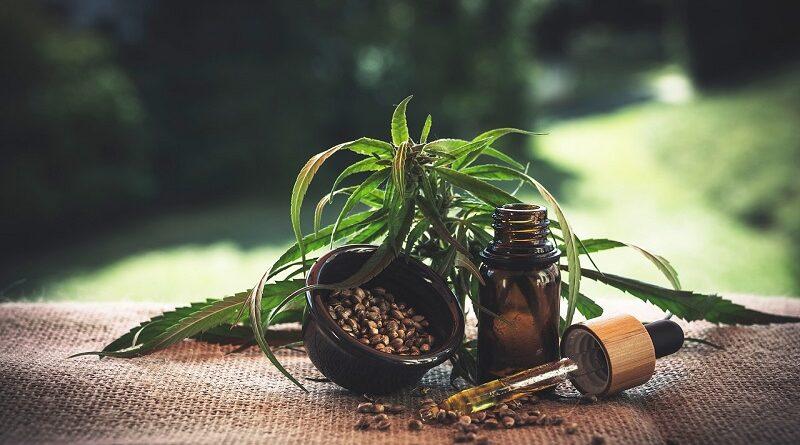 Jaké jsou přínosy v léčbě a jak poznat vysoce kvalitní CBD olej