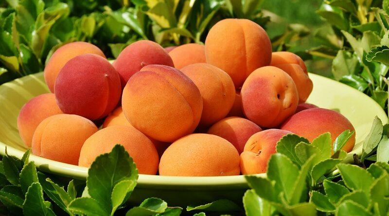 Proč zařadit do jídelníčku meruňky a jejich zdravotní výhody