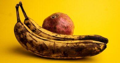 Jak se přirozeně zbavit ovocných mušek a co způsobuje výskyt