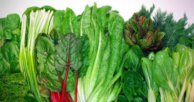 Vitamín E a druhy čerstvé zeleniny které ho obsahují nejvíce