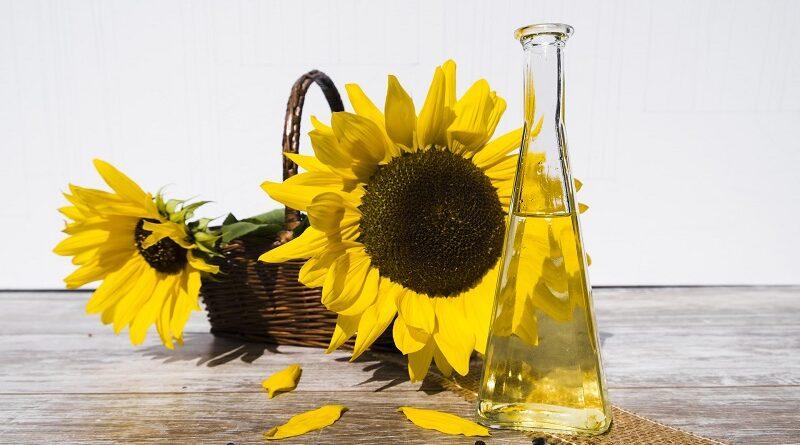 Proč je slunečnicový olej skvělý pro vaši pleť a jeho výhody